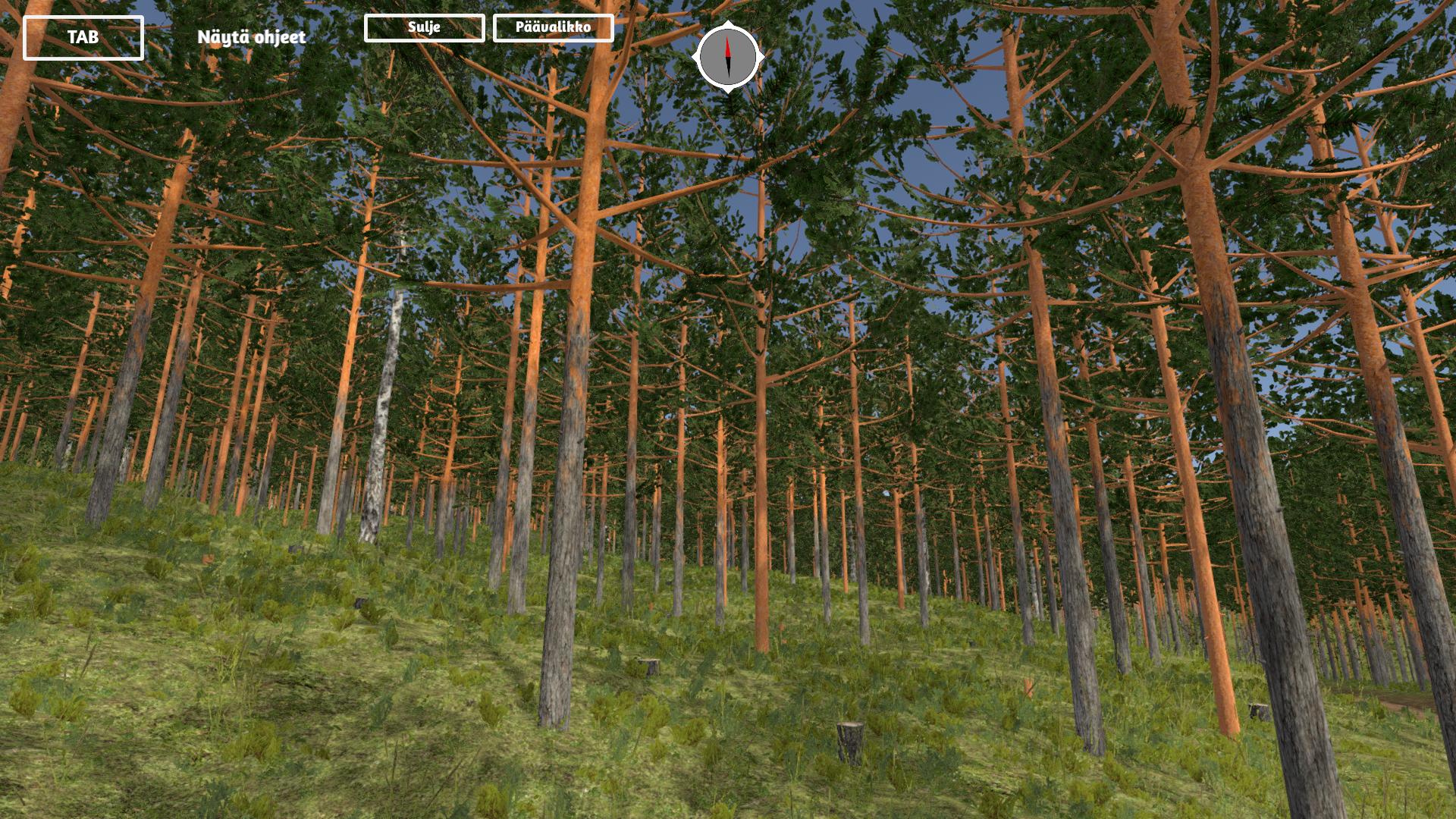 Kuvassa Virtuaalimetsä-sovelluksen käyttöliittymä, jossa mäntymetsää.